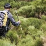 Monts d'Ardèche en rando liberté