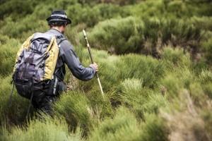 Rando liberté dans les Monts d'Ardèche